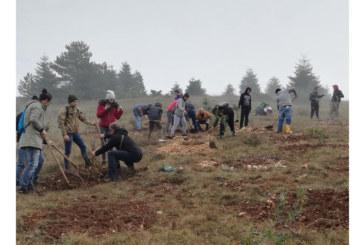 """Riserva naturale """"Monte Salviano"""": il Serpieri impegnato nella rinaturalizzazione e difesa della biodiversità"""