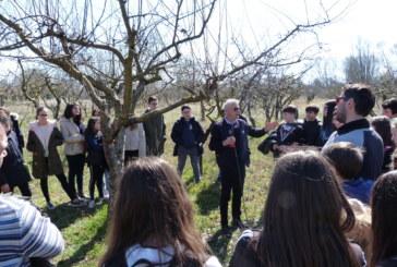 """Progetto """"Adotta un albero del Serpieri"""" IC """"Vivenza- Giovanni XXIII"""" 6 marzo 2019"""